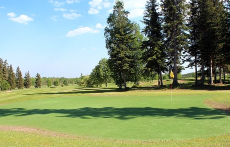 Seven-spruce-golf-course-tee