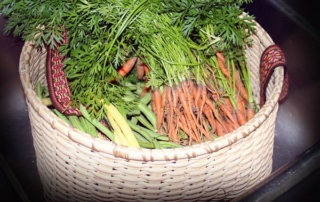 garden-vegetable-basket